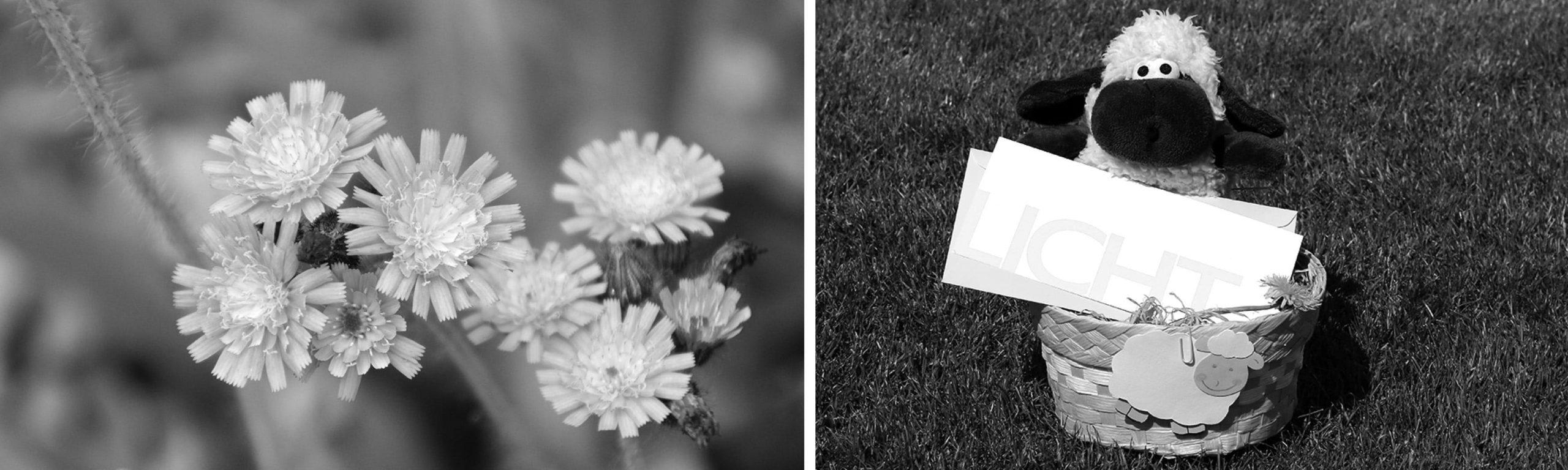 6 Content Ideen für Frühling und Ostern